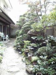 庭①.jpg