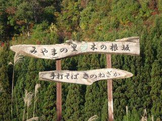 木の根坂 002.jpg