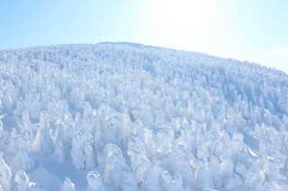 樹氷①.jpg