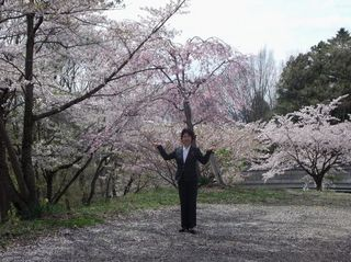 蔵王桜 015.jpg