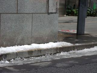 雪の東京 001.jpg