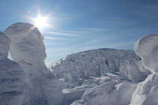 樹氷④.jpg