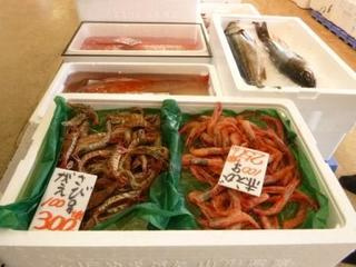 海鮮市場(圧縮データ).jpg