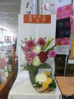 H25.11.25ダリア(県庁ロビー)2.JPG